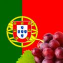 Portugueses